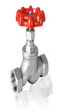 Stainless steel Female Globe Valve