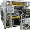 WI-750-550-type bump molded plastic thermoforming machine