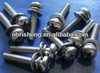 Combination Screws with washer and spring washer