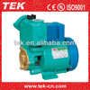 GP-250 Peripheral Pump