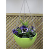colorful hanging baskets , hot sale in UK