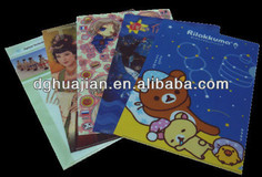 Plastic folder,CMYK printing folder