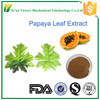 Papaya leaf extract powder