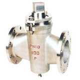 Two-way Stainless Steel Plug Valves