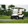 2 front seater plus 2 back seater  electric golf cart