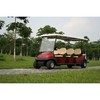 5-6 seats CE 48V electric fuel type golf cart