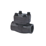 Cast Steel and Stainless Steel Check Valve