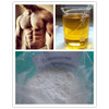 Test Phenylpropionate Steroids Testosterone Phenylpropionate