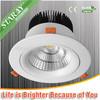 LED Downlight 30W COB LED Downlight