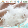 High Quality White Duck Feather