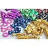 Colorful titanium Ti bolts screws for bike bicycle motor car