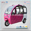 Zip Star 48v electric tricycle for adults popular in South America