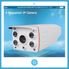 5 Megapixel Outdoor Wireless Wifi Opional IP Camera Easy to Install P2P IP Camera