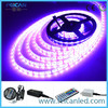 IP65/66/67/68 LED STRIPS ,5050 RGB LED STRIPS