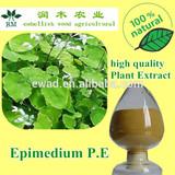 epimedium P.E
