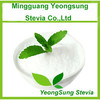 100% Natural Stevia Sugar Powder
