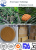 Pure Natural bromelain powder Pineapple extract