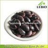 Large Beans Black Speckled Kidney Beans
