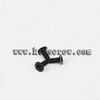 security screw for CSK torx with pin security screw