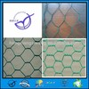 pvc coated hexagonal wire mesh for Plant protection guard