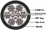 Lan Cable, CAT5-50P-PVC U/UTP 50*2*0.5