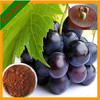 Grape Seed Extract (Polyphenols40%-95%, Proanthocyanidins95%)
