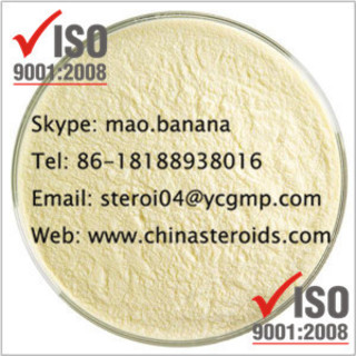 Wholesale 1-Phenyl-2-Nitropropene (p2np) Made-In-China