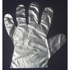 Disposable PE Gloves/Plastic gloves/LDPE HDPE GLOVES