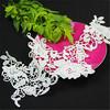 neck lace embroidery trim cotton lace collar