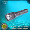 Brinyte Handle  torch aluminum material rotary switch rechargeable diving flashlight