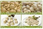 Good Taste Brined Champignon Button Mushroom in tin