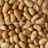 instant organic roasted soybean