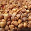 organic roasted buckwheat kernel
