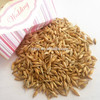 barley for feed,good quality and cheap price for animals