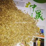 Crop of Australia barley in bulk supply for animals,tea,also for beer