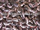 Large Black Speckled Kidney Beans 2012 Crop