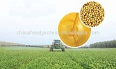 Soy Protein Concentrate for animal feed
