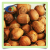 Special grade hazelnut for whole sale