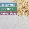 Animal Feed Ingredient For Protein Supplement