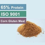 Supply Corn Gluten Meal 65 Protein For Animal Feed