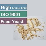 Feed Yeast Factory For 55, 60,65 Protein