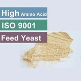 Dry Yeast For Animal Feed 60 Protein