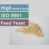Good Quality Feed Yeast 45 50 55 Protein Feed Grade