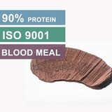 Competitive Blood Meal Price For 90 Protein