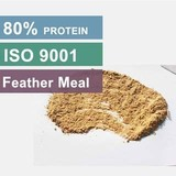 Hydrolyzed Feather Meal 80 Protein Feed Grade