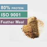 Competitive Price Feather Meal 80 Protein