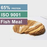 Competitive Fish Meal Price For 50 to 65 Protein