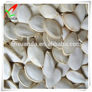 Chinese new crop pumpkin seeds snow white