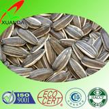 bulk cheap sunflower seeds
