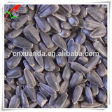 wholesale black oil sunflower seeds sale